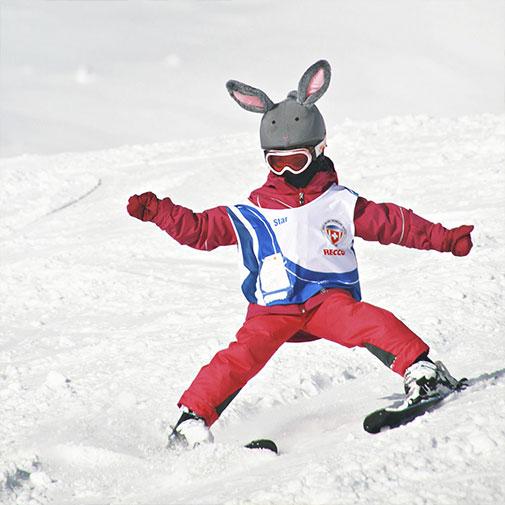 Funda casco de Conejo usada en el SKI
