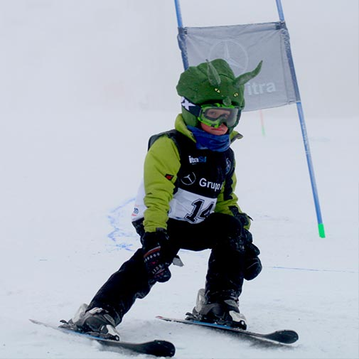 Funda casco Dinosaurio Ski