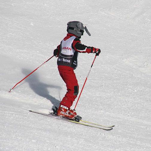 Funda casco forma de Elefante esquí