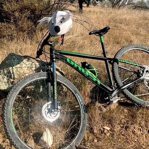 Funda casco Koala Bicicleta