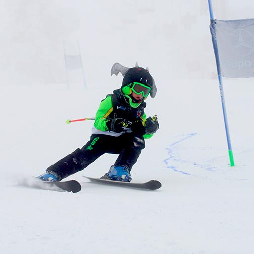 Funda casco Murciélago Ski