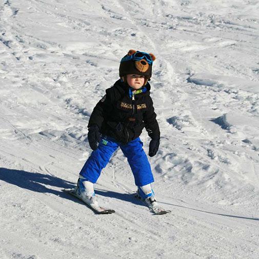 Funda casco Oso Pardo esquí