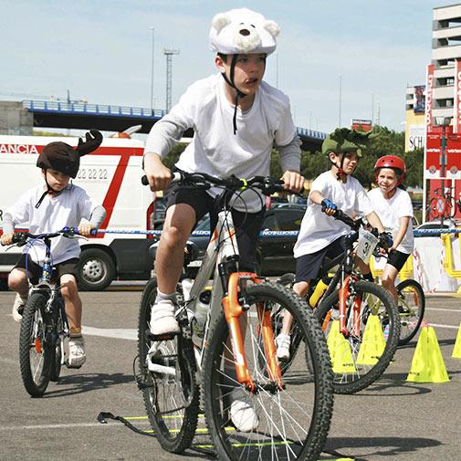 Funda casco Oso Polar para Bicicleta