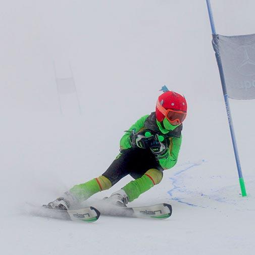 Funda casco con forma de Pez Esquí