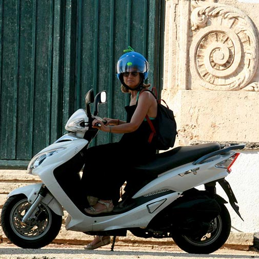 Funda casco para moto Pájaro