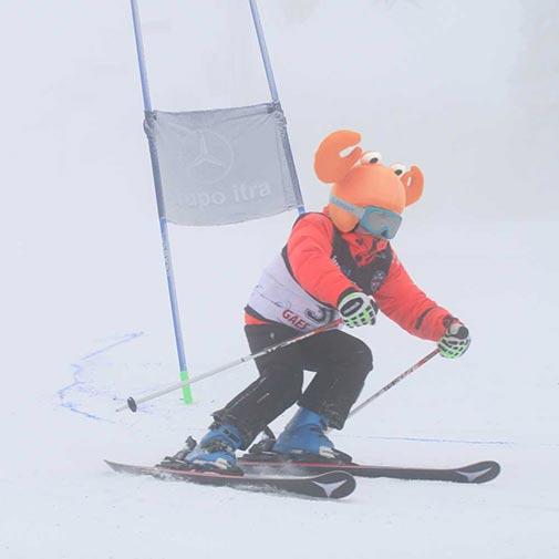funda casco Cangrejo ski